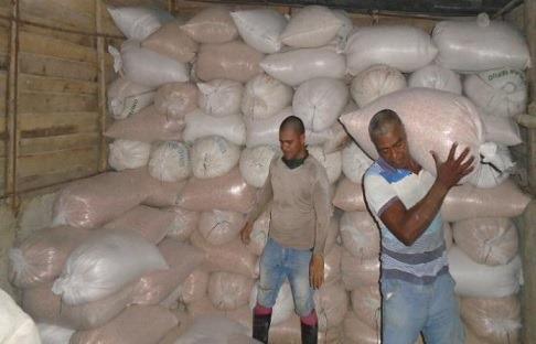 Maíz robado en Santiago de Cuba
