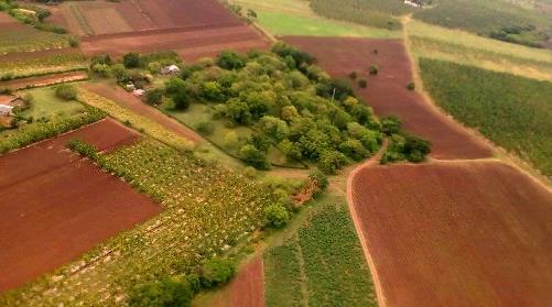 La responsabilidad por el aumento sostenido y eficiente de la agricultura redundará en mejores producciones de alimentos en Santiago de Cuba.