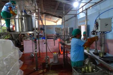 Minindustrias frutales de El Caney, Santiago de Cuba.