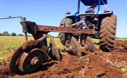 Cantidad y eficiencia, palabras urgentes en la agricultura