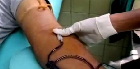 Donación de sangre en los municipios de la provincia Santiago de Cuba.