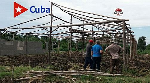 Casas rústicas para mejorar rendimientos agrícolas