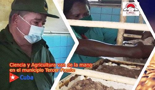 Ciencia y agricultura van de la mano en el municipio Tercer Frente.
