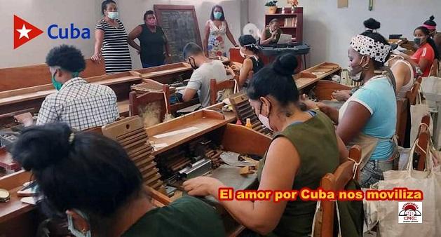 Tabacaleros en Santiago de Cuba m<rcan nuevo ritmo de producción en un renglón exportable no tradicional en esta provincia.