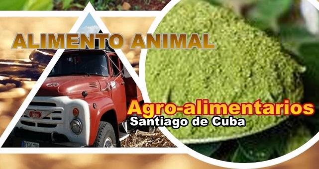 Agroalimentarios Santiago de Cuba por una mejor producción de carne animal