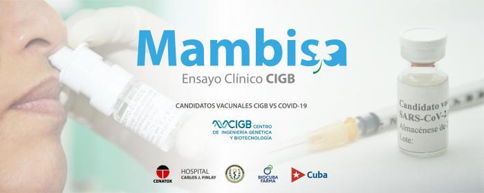 Candidato vacunal Mambisa, de Cuba.