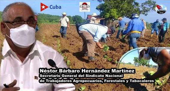 El secretario general del Sindicato Nacional de los Trabajadores Agropecuarios, Forestales y Tabacaleros, Néstor Bárbaro Hernández Martínez