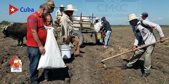 Sequía en Ruta Martiana, municipio de Contramaestre, provincia Santiago de Cuba; movimiento de producción agroalimentario.