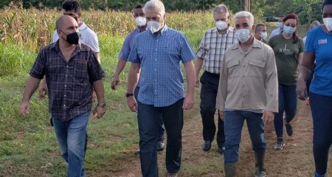 Visita Presidente cubano polo productivo de Mayabeque